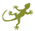 gecko-icon-2.png