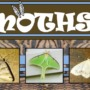 Moth activities for all ages!